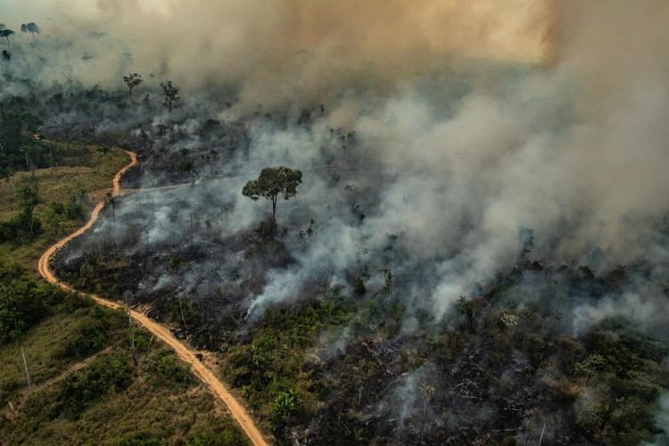 Queimadas na Amazônia aumentam em quase 50% na primeira metade do ano