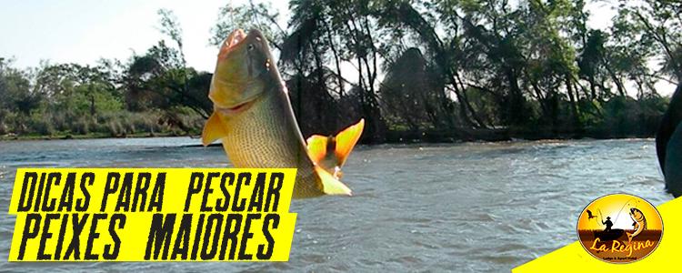Conheça algumas dicas para você pescar peixes maiores