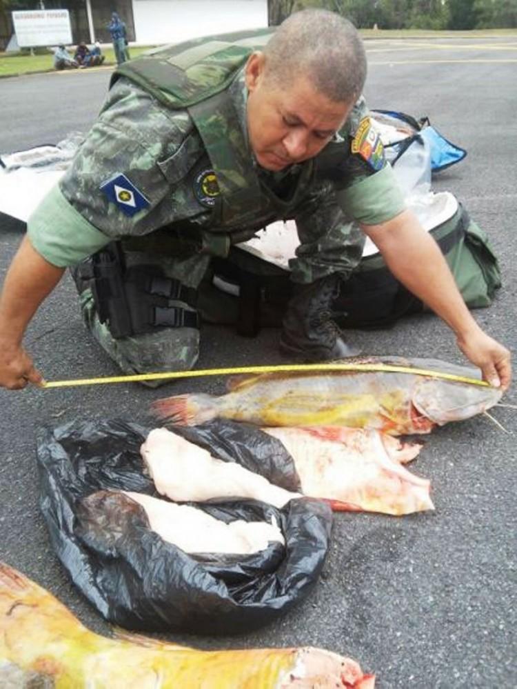 Desembargador é preso por pesca predatória no Pantanal