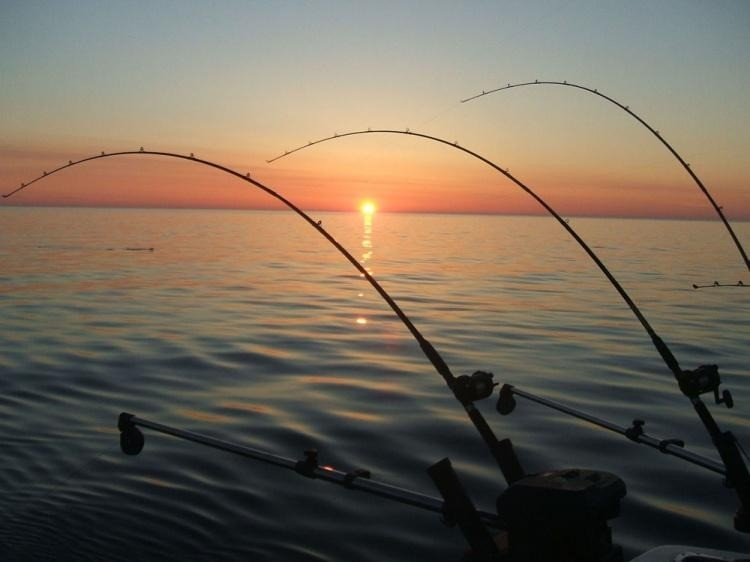 Dez dicas de como realizar uma pesca noturna com sucesso