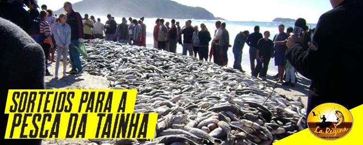 Minitério da Agricultura farpa sorteio para selecionar barcos para pesca da Tainha