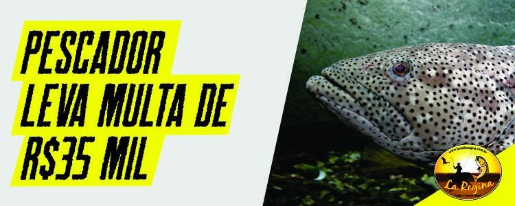 Pescador leva multa de R$ 35 mil por abater sete garoupas