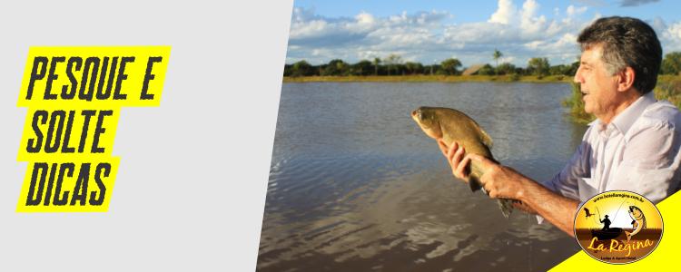 Pesque e Solte – Dicas e Procedimentos para a pesca