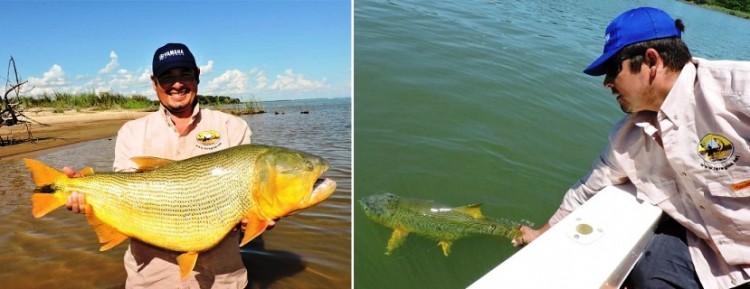 Assembleia legislativa realiza debate sobre a  proibição da pesca do dourado nos rios do Mato Grosso do Sul.