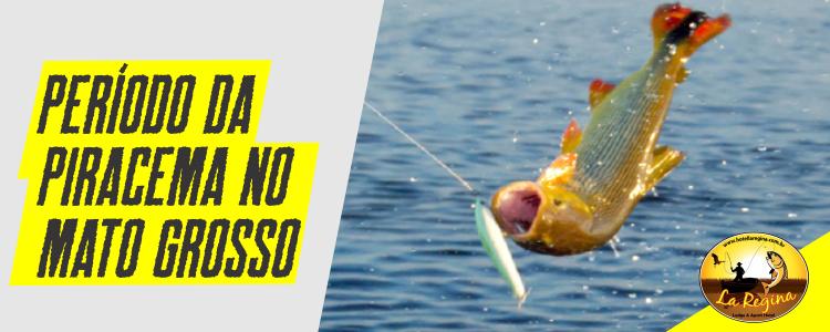Proibição da pesca em Mato Grosso começa neste domingo