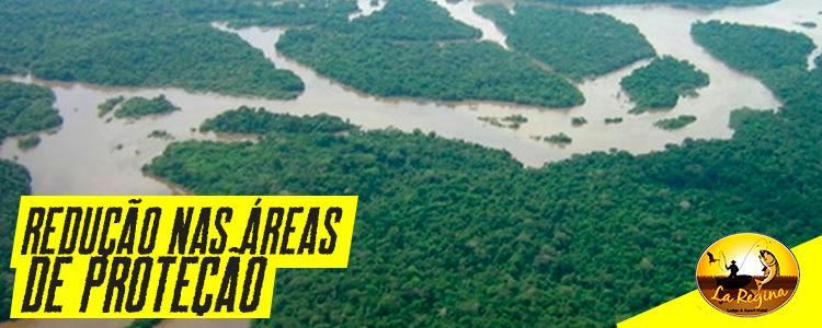 Senado aprova projeto que reduz áreas de preservação na Amazônia