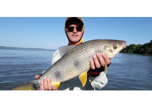 Pacote de pesca para Agosto 2020